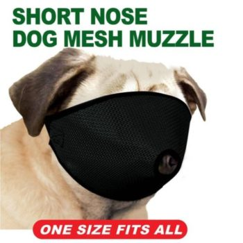 Short Nose Dog Mesh Muzzle
