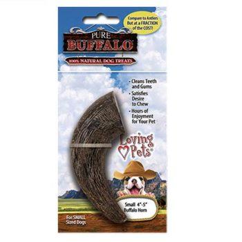 Small-Buffalo-Horn