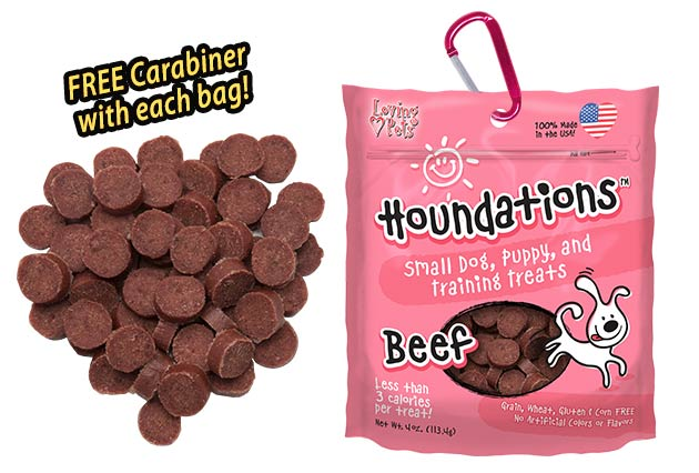 Houndations-Beef-Small-Dog-Training-Treat
