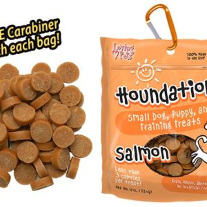 Houndations-Salmon-Small-Dog-Training-Treat